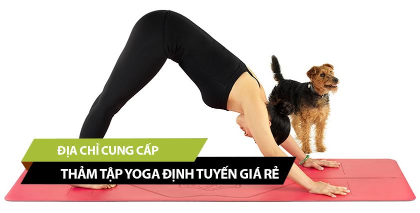 Đâu là địa chỉ cung cấp thảm tập Yoga định tuyến giá rẻ